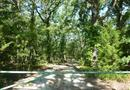 758 Rs County Road 1490, Point, TX 75472